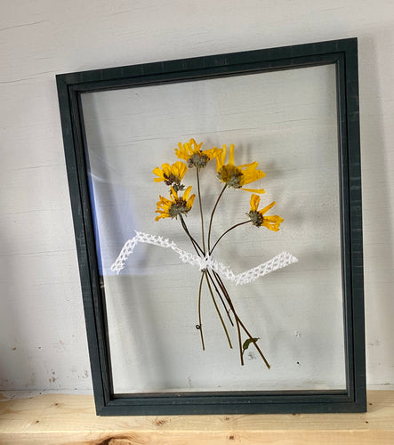 Dried yellow flowers from Crystal Cove, California