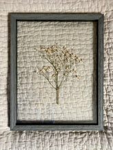 Dried baby's breath in a 11x14 gray barn wood float frame
