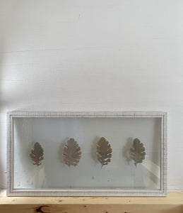 Dried Dusty Miller leaves in a wooden float frame