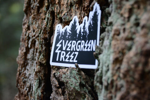 The Dougie Fir Sticker