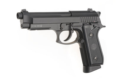 Air Pistols / Paintball Guns and Accessories