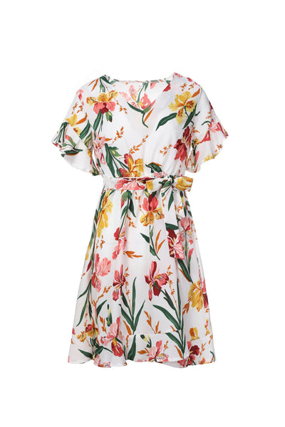 Short Sleeve Printing Dresses