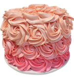 Cake Creations by Kate™ DessertCakes Ombre Rosette Icing Dessert Cake