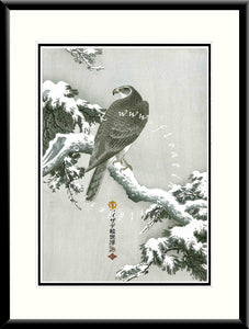 LE-002 Eagle IIIa Limited Edition Mounted or Framed Print