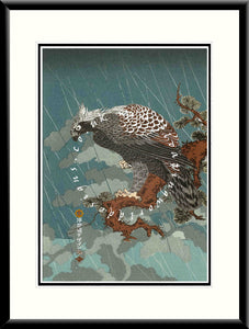 LE-003 Eagle in the Rain Limited Edition Mounted or Framed Print