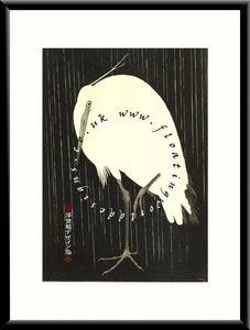 M-006 Heron in the Rain (1) Mounted or Framed Print