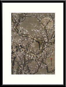 M-012 Cherry Blossom Mounted or Framed Print