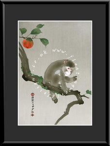 M-020 Monkey on a Persimmon Branch  Mounted or Framed Print