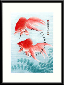 M-032 Koi    Mounted or Framed Print