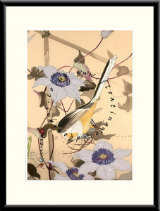 M-051 Yellow Bird  Mounted or Framed Print