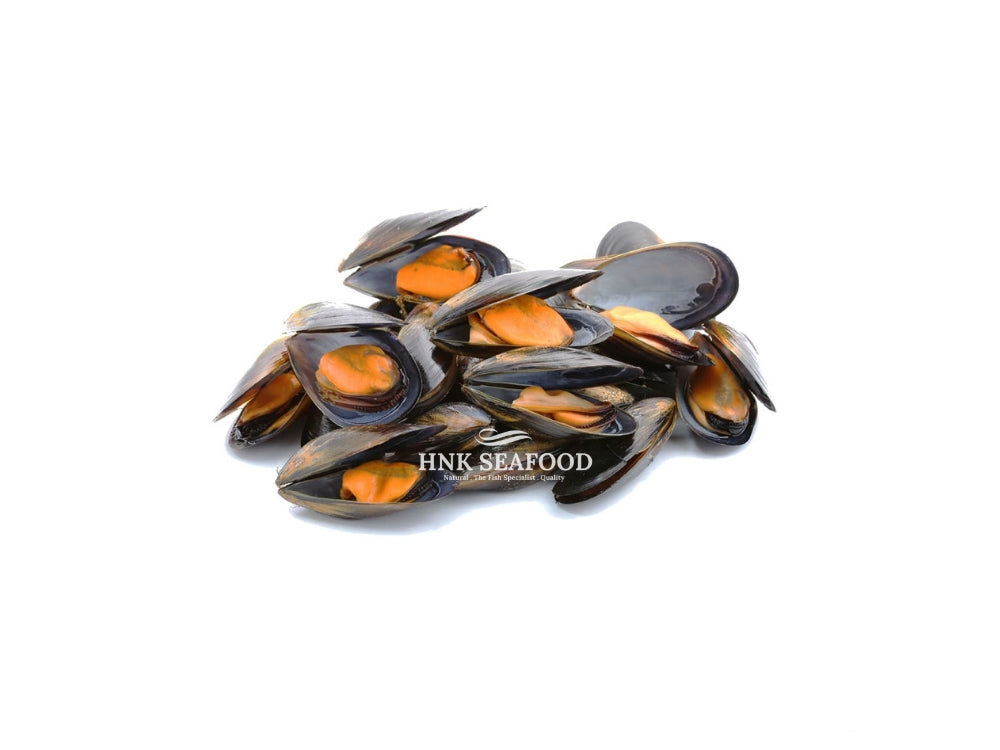 Full Shell Blue Mussel