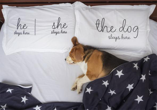 The Dog Life Pillow Cover Set