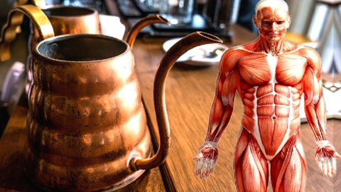 what copper does in the body