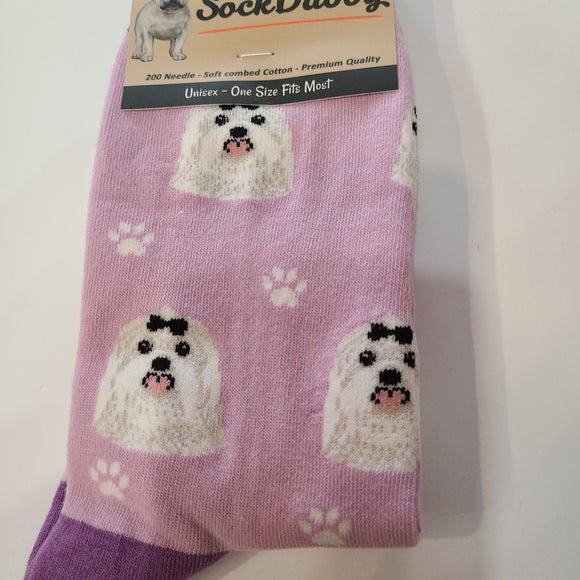 Dog Socks Maltese