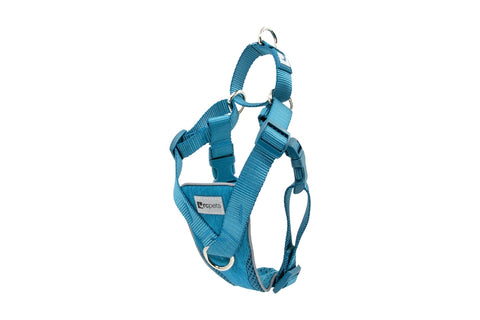 RC Tempo No Pull Harness Teal