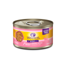 Wellness Grain Free Kitten Pate Cat Canned