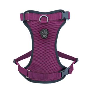 Canada Pooch® Pink Harness