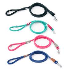 Zippy Paws Mod Essential Leash 5ft