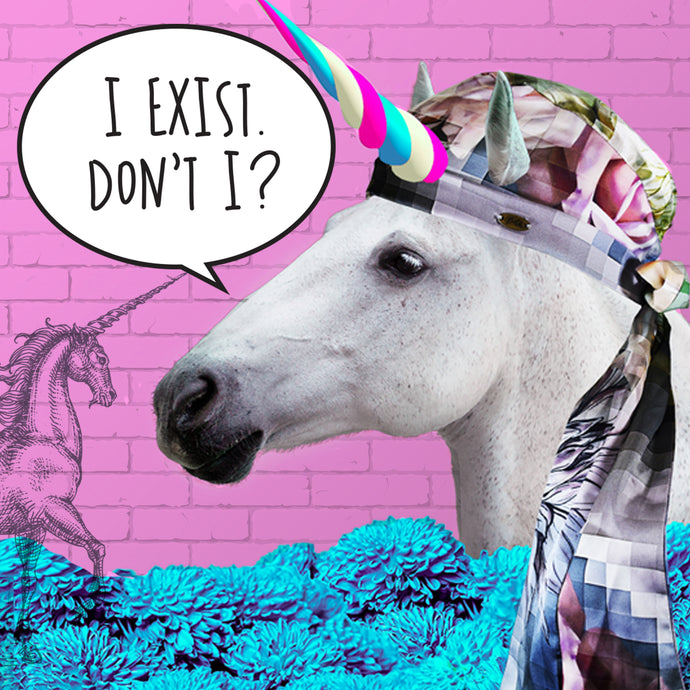 What! No-one actually thinks Unicorns exist!