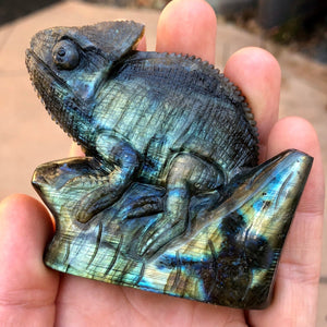 Top Quality 168g Hand Carved Labradorite Chameleon Lizard Decorator Carving - Madagascar - Self Standing - Item:L18047
