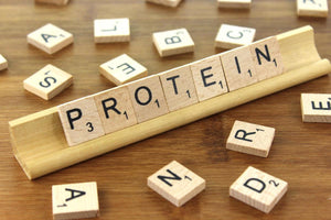 Protein: An Essential Guide for Youth Athletes