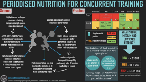periodised nutrition for concurrent training