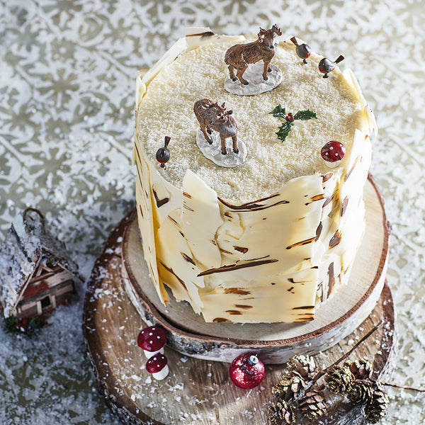 Double Chocolate Christmas Cake Recipe Ryland Peters Small