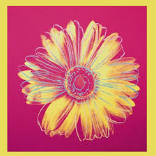 DAISY, C.1982 (Fuchsia & Yellow)