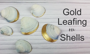 Shell Decorating | Beautiful Shell Display Idea