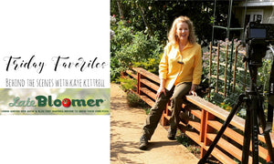 Interview With Kaye Kitrell | Late Bloomer