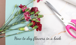 how to dry flowers in books