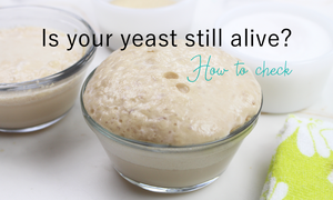 how to check if yeast is still alive and ok
