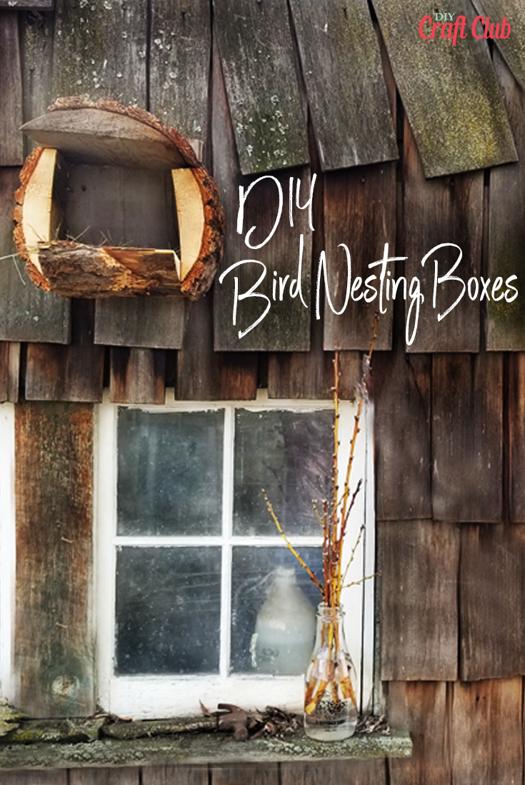 How To Build DIY Bird Nesting Boxes