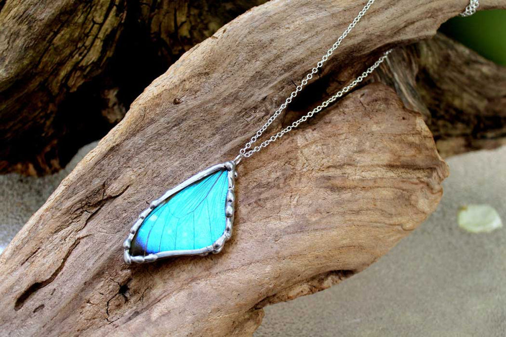 real butterfly wing jewelry on etsy