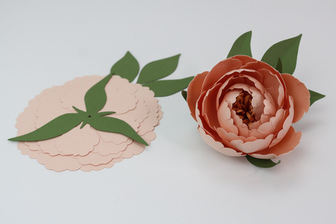 Paper flower kit for crafters