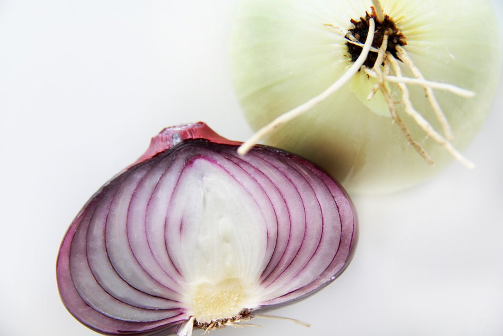 best onions for french onion soup