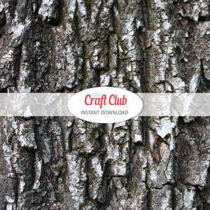 tree bark paper digital download