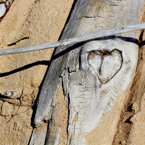 driftwood with heart download