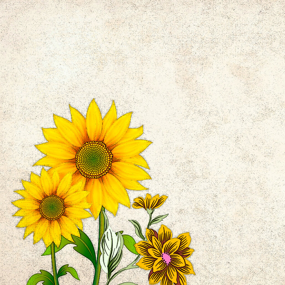 picture relating to Printable Sunflower referred to as Sunflower Printable Paper Producing Components - Do-it-yourself Craft Club