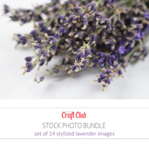 lavender pictures to print