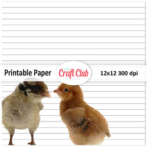 lined chicken paper