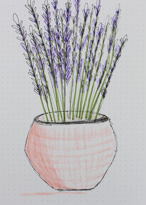 lavender doodle to download