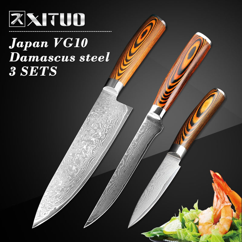 3 Piece Japanese Damascus Steel Boning Knife Set