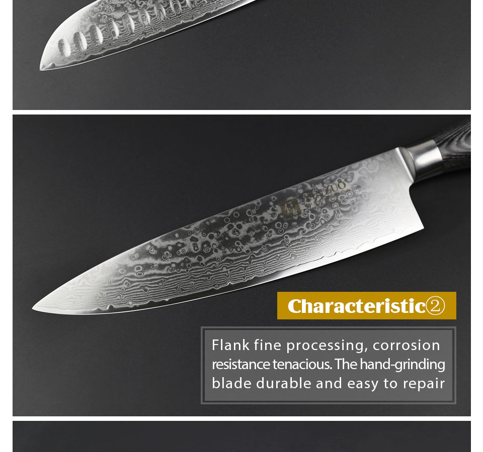 5pcs Santoku Knives Set Damascus Steel with Pakka Wood Handle