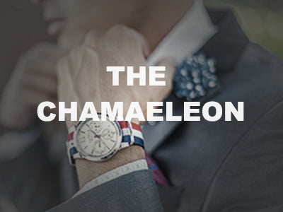 The Chamaeleon