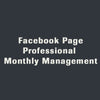 Facebook Page Professional Monthly Management