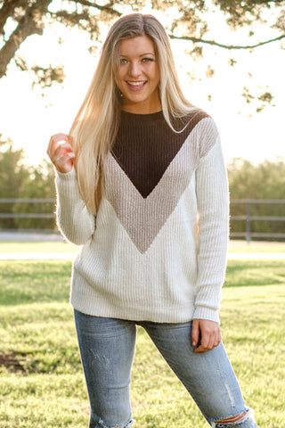 Brown & Taupe Color Block Sweater