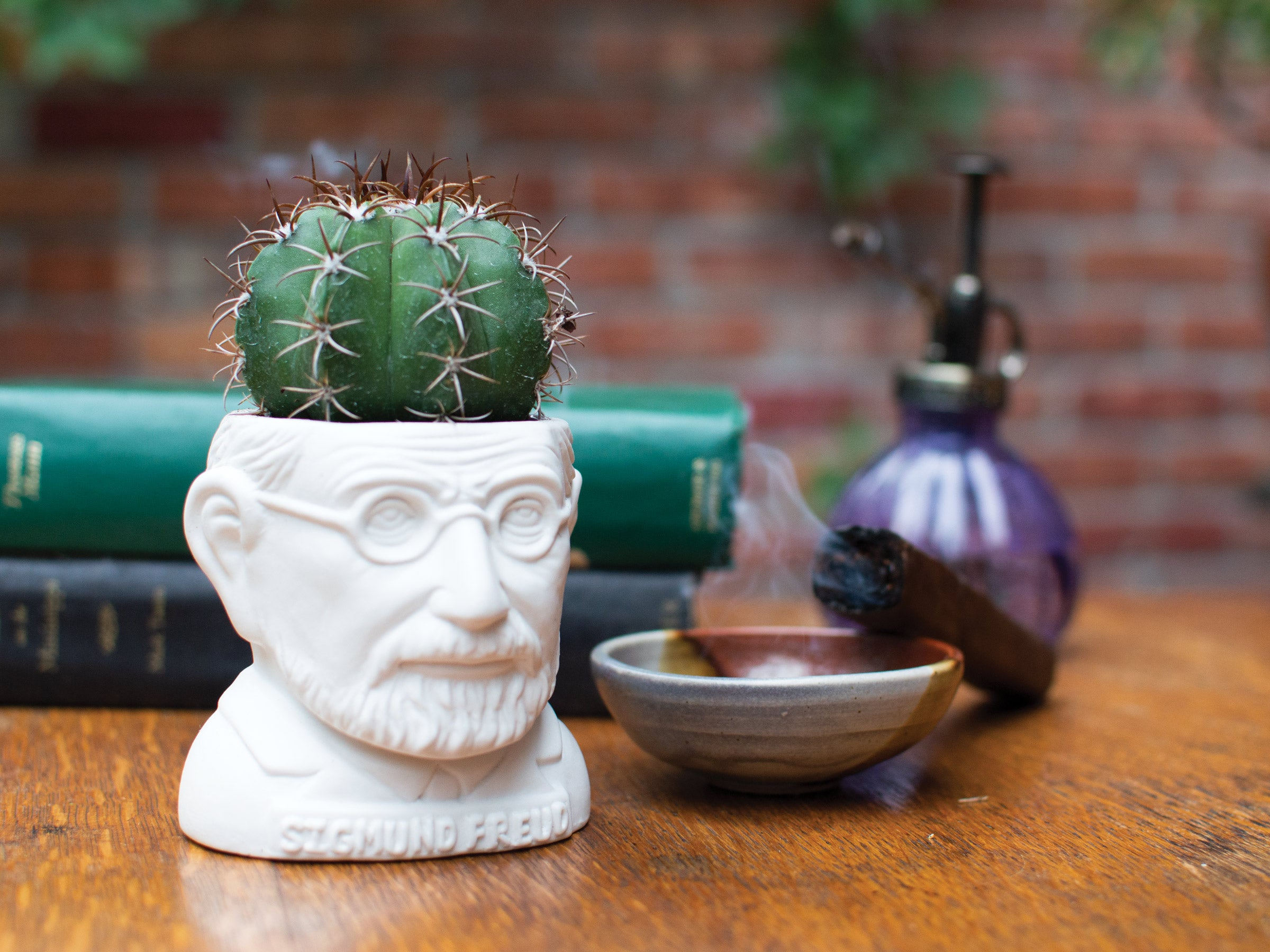 Sigmund Freud Planter