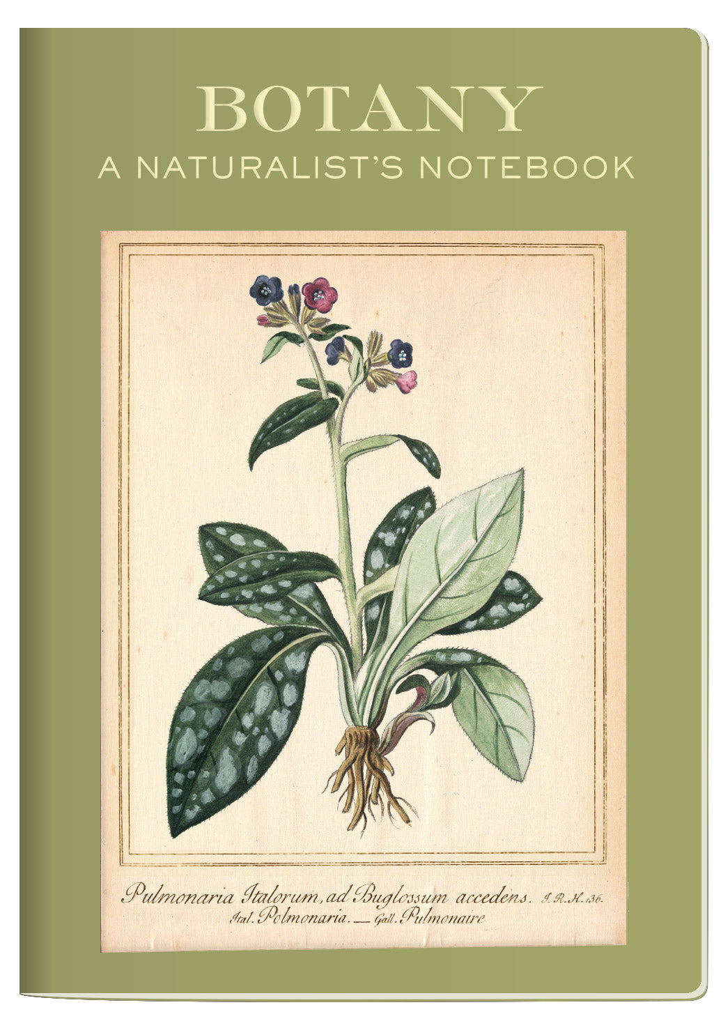 Botany Notebook - The Unemployed Philosophers Guild