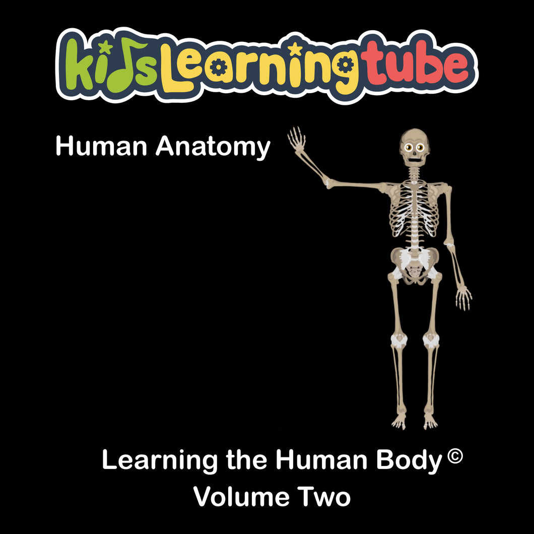Anatomy and Physiology Games - The OnlineLearningCenter